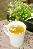 A cup of useful soothing chamomile tea, a bouquet of chamomiles and a book on a swing. Selective focus stock photos