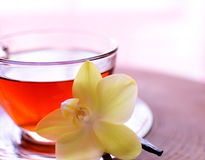 Cup of vanilla black tea. Vanilla black tea with orchid for decorations on the wooden table. Tea in glass cup. For good morning and good day royalty free stock photos