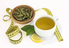 Cup of verbena Stock Image