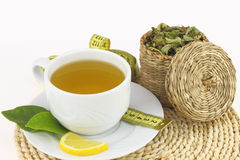 Cup of verbena. With lemon Royalty Free Stock Photography