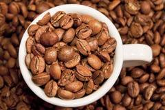 Cup voll Kaffeebohnen Lizenzfreies Stockbild