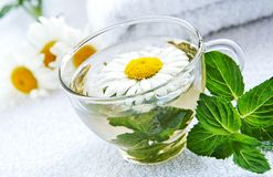Cup of warm camomile-mint tea. A glass cap of camomile-mint warm herbal tea, arrnged by fresh camomile flowers and mint leaves using as alternative treatments in Stock Image