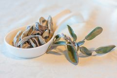 Warm herbal tea on a winters day Stock Photography