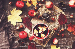 Cup of warming tea with apple and cranberry and woolen scarf Royalty Free Stock Photography