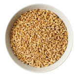 Cup of  wheat Stock Photos