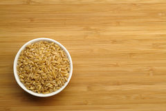 Cup of Wheat Stock Image