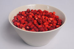 Cup of wild strawberries Royalty Free Stock Images