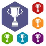 Cup for win icons set Stock Image