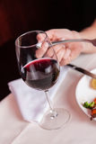 Cup of wine Royalty Free Stock Photos