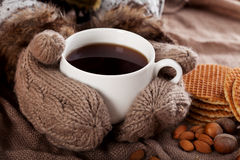 Cup of winter tea Royalty Free Stock Image