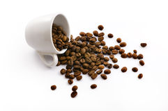 Free Cup With Coffe Beans Royalty Free Stock Photo - 10398375