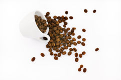 Free Cup With Coffe Beans Royalty Free Stock Images - 10521979