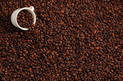 Cup With Coffee Beans Royalty Free Stock Photography