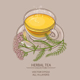 Cup of yarrow tea Royalty Free Stock Photography
