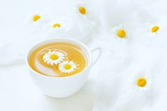 Cup of yellow chamomile tea organic aromatic Stock Photos