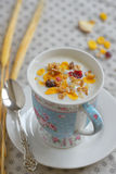 Cup of yogurt with cereals Royalty Free Stock Photo