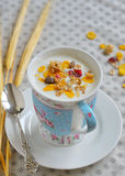 Cup of yogurt with cereals Stock Image