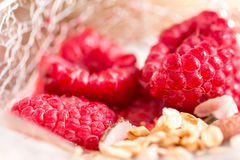 Cup of yogurt with granola and raspberry Royalty Free Stock Photo