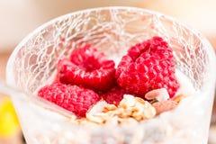 Cup of yogurt with granola and raspberry Stock Image