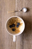 Cup of yougurt. With blueberries Stock Images