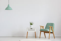 Cupboard with plant. Photo of white wooden cupboard with fresh plant and mint lampshade royalty free stock photo