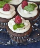 cupcake επιδόρπιο scrumptious Στοκ εικόνες με δικαίωμα ελεύθερης χρήσης