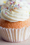 cupcake η τήξη ψεκάζει Στοκ Εικόνες