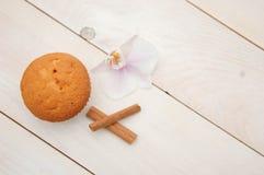 Cupcake και κανέλα Στοκ φωτογραφίες με δικαίωμα ελεύθερης χρήσης