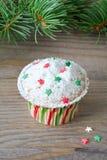 Cupcake με τη διακόσμηση αστεριών Στοκ Εικόνες