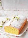 Cupcake με το τυρί εξοχικών σπιτιών Στοκ φωτογραφίες με δικαίωμα ελεύθερης χρήσης