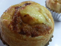 cupcake χοιρινό κρέας καταστροφέων εγγράφων Στοκ φωτογραφία με δικαίωμα ελεύθερης χρήσης