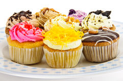 Cupcake. Is on white background stock image