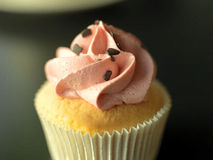 Cupcake. With pink icing and chocolate sprinkles Royalty Free Stock Image
