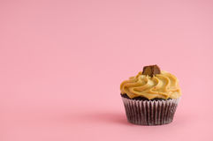 Cupcake. On pink background with frosting Stock Images
