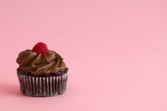 Cupcake. On pink background with frosting Royalty Free Stock Image