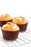cupcake photographie stock