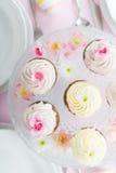 cupcake fotos de stock royalty free