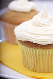 Cupcake. Pair of homemade cupcakes decorated with fresh buttercreme frosting stock image