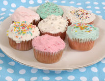 Cupcake assortment Royalty Free Stock Photos