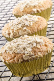 Cupcake baked with organic oatmeal Stock Photography