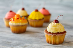 Cupcake with beige frosting. Stock Image