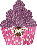 Cupcake blackberries Royalty Free Stock Image