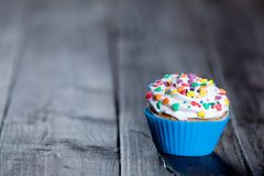 Cupcake in blue cup Royalty Free Stock Image