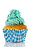 Cupcake in blue and green Stock Image