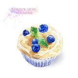 Cupcake with blueberries. Royalty Free Stock Photo