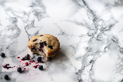Cupcake with blueberries. Delicious berry cake on a marble table Stock Image
