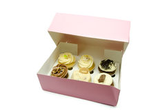 Cupcake box Stock Images