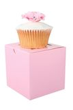 Cupcake on Box Stock Images