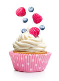 Cupcake with butter cream and raspberry Royalty Free Stock Photos