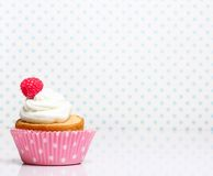 Cupcake  with butter cream and raspberry Royalty Free Stock Photo